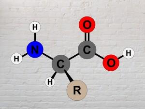 Aminoacizii esentiali si neesentiali. Glutationul
