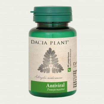 Antiviral (60 comprimate), Dacia Plant