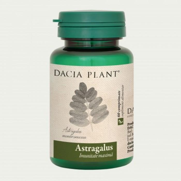 Astragalus (60 comprimate), Dacia Plant
