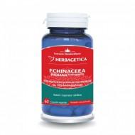 Echinaceea indiana (60 capsule), Herbagetica