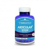 Articular Stem (120 capsule), Herbagetica