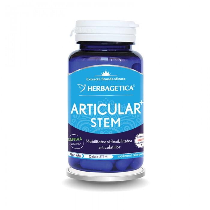 Articular Stem (60 capsule), Herbagetica