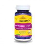 Cordyceps 10/30/1 Ciuperca Tibetana Forte (60 capsule), Herbagetica