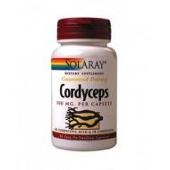 Cordyceps (60 capsule vegetale)