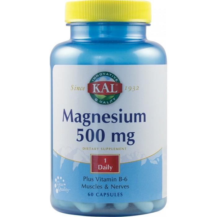 Magnesium 500mg (60 capsule)