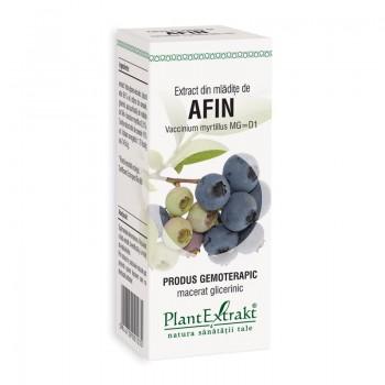 Extract din mladite de afin - Vaccinium Myrtillus MG=D1 (50 ml), Plantextrakt