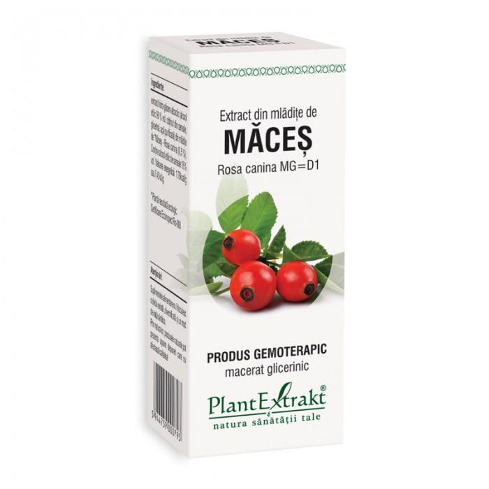 Extract din mladite de maces - Rosa Canina (50 ml), Plantextrakt
