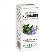 Extract din mladite de rozmarin - Rosmarinus Officinalis (50 ml), Plantextrakt