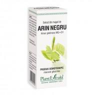 Extract din muguri de arin negru - Alnus Glutinosa MG=D1 (50 ml), Plantextrakt