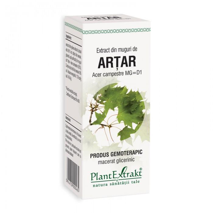 Extract din muguri de artar - Acer Campestre MG=D1 (50 ml), Plantextrakt
