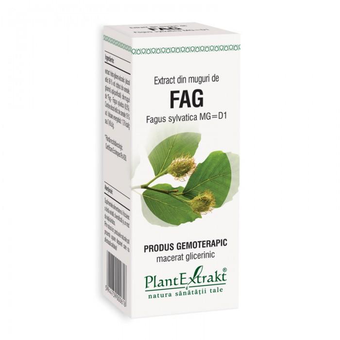 Extract din muguri de fag - Fagus Sylvatica MG=D1 (50 ml), Plantextrakt