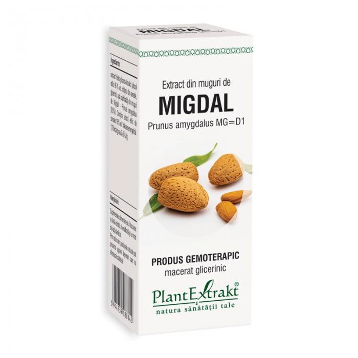 Extract din muguri de migdal - Prunus Amygdalus MG=D1 (50 ml), Plantextrakt