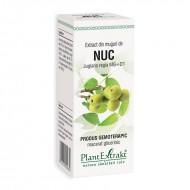 Extract din muguri de nuc - Juglans Regia MG=D1 (50 ml), Plantextrakt