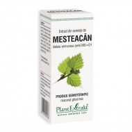 Extract din seminte de mesteacan Betula Verrucosa MG=D1 (50 ml), Plantextrakt