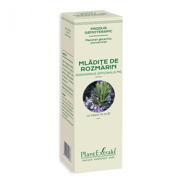 Macerat glicerinic concentrat din mladite de rozmarin - Rosmarinus Officinalis (15ml), Plantextrakt
