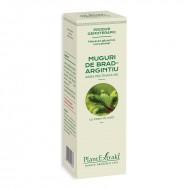 Macerat glicerinic concentrat din muguri de brad - Abies Pectinata (15 ml), Plantextrakt