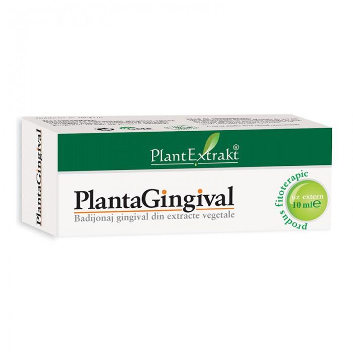Plantagingival (10 ml), Plantextrakt