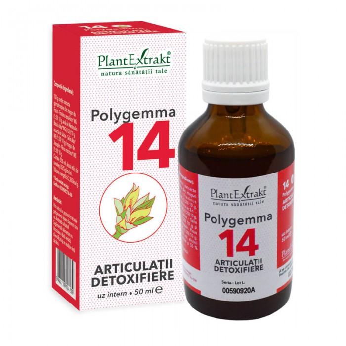 Polygemma 14 - Articulatii, detoxifiere (50 ml), Plantextrakt