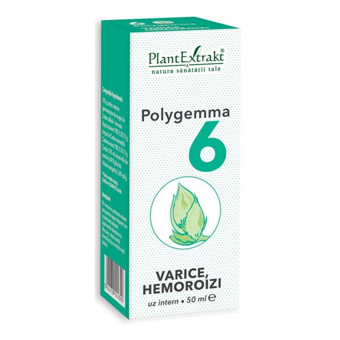 Polygemma 6 - Varice, hemoroizi (50 ml), Plantextrakt