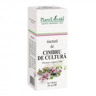 Tinctura de cimbru - Thymus Vulgaris TM (50 ml), Plantextrakt