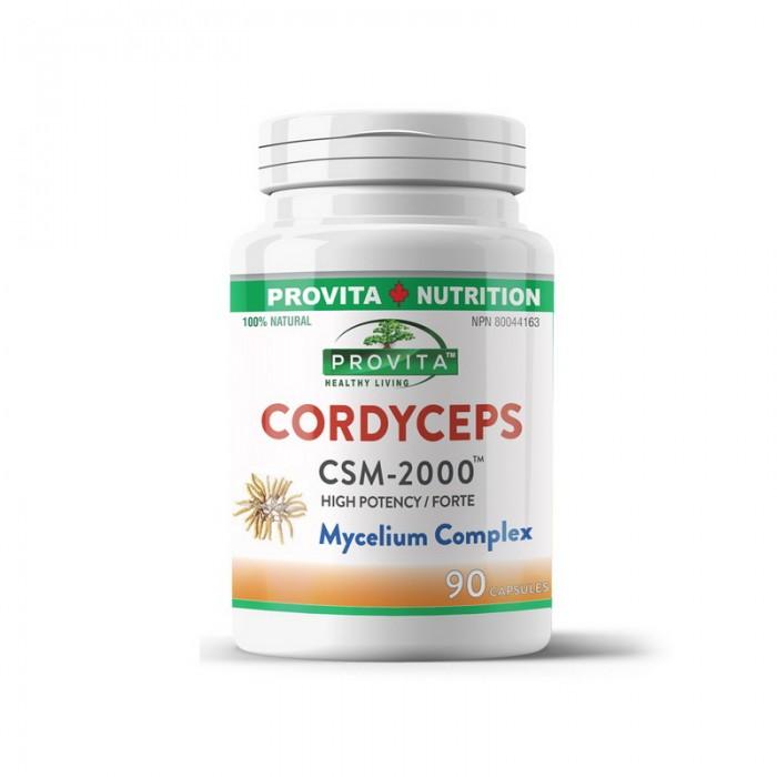 Cordyceps CSM-2000 (90 capsule), Provita Nutrition