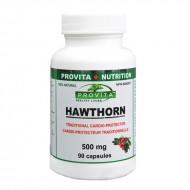 Paducel rosu 500 mg (90 capsule), Provita Nutrition