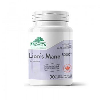 Ciuperca Coama Leului 500 mg (90 capsule), Provita Nutrition