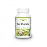 Saw Palmetto Forte Extract din fructe de palmier pitic 500 mg (90 capsule), Natural Factors