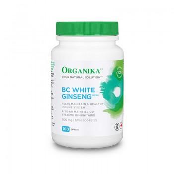 Ginseng Alb de BC 500 mg (100 capsule), Organika Canada