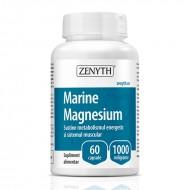 Marine Magnesium 100 mg (60 capsule), Zenyth Pharmaceuticals